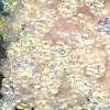 detail_14268_ci5flwr82.jpg