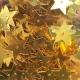 detail_15027_m15flatstar13.jpg